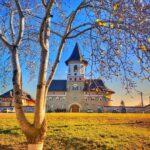 Mănăstirea Zosin 1